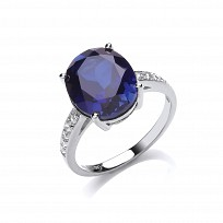 Silver CZ & Creative Sapphire Round Stone Fancy Ring
